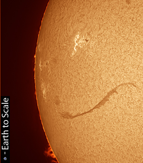 AR11676_AR11673_Filament_17-02-2013